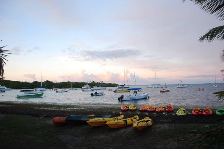 Bioluminescent-Bay-Tour-